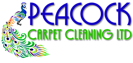 carpet cleaning reading logo
