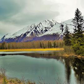 Trail Lake by Patricia Phillips - Landscapes Travel ( lakes alaska )