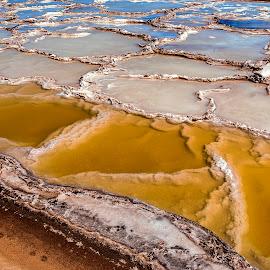 Salt Water Pans by Johan Jooste Snr - Nature Up Close Water ( crystals, pans, water, patterns, walvis bay, namibia, salt )