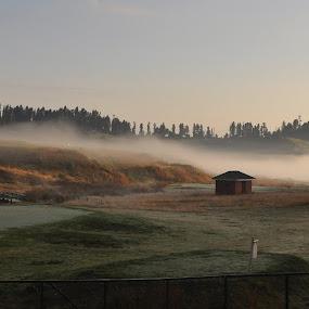 Mystic meadow by Tridibesh Indu - Landscapes Prairies, Meadows & Fields ( field, clouds, mystic, sky, nature, mystical, meadow, kashmir, meadows, sunrise, landscapes, landscape,  )