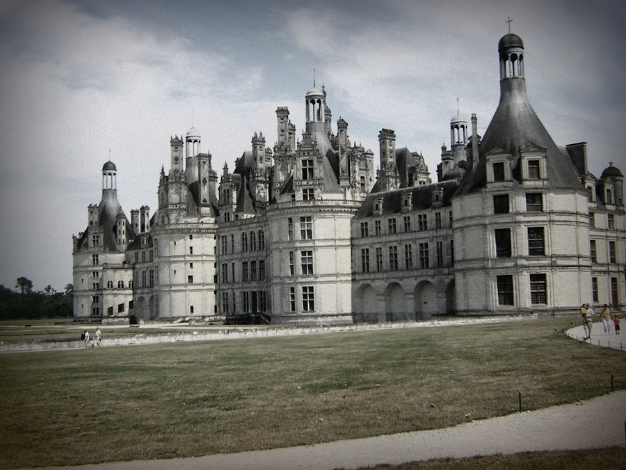 Castle of the Loire Valley by Sara Estes - Landscapes Travel