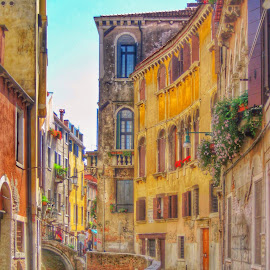 Local street by Mandy Hedley - City,  Street & Park  Street Scenes ( street, venice, scene, architecture, canal )
