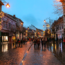 Sibiu Targ de Craciun by Nastasache Florin Ionut - City,  Street & Park  Vistas