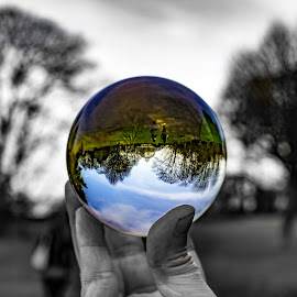 Other worlds by Paul Stokinger - Landscapes Forests ( clouds, explore, detail, unique, wood, crystal ball, beautiful, crystal, beauty, travel, people, sky, tree, interesting, walk, design )