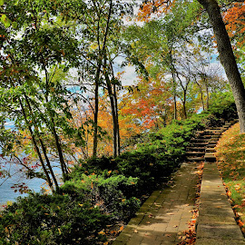 Stairs by the Bay by Gary Massey - City,  Street & Park  Neighborhoods ( geneva lake, williams bay )
