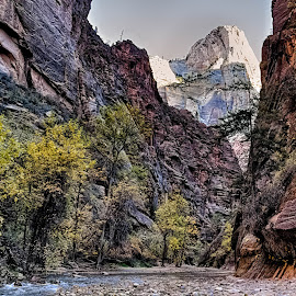 Heading for the Narrows in Zion National Park by Brent Morris - Landscapes Mountains & Hills