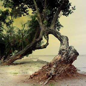 Ancol Beach by Ändreas Bagio - Landscapes Beaches