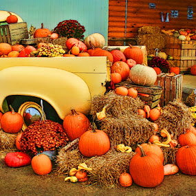 Pumpkins for Sale by Dennis Granzow - News & Events World Events ( yellow pickup truck hay bailes, ohio, amish country, pumpkins, fall, flowers )