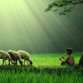 Gembala Kambingku by Ipoenk Graphic - Digital Art People ( children, landscape )