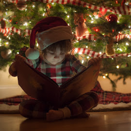 'Twas The Night Before Christmas by Chris Cavallo - Public Holidays Christmas ( christmas lights, christmas, christmas tree, toddler, portrait )