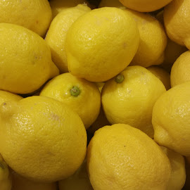 Lemons by Maricor Bayotas-Brizzi - Food & Drink Fruits & Vegetables