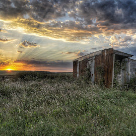East fleet barn, Dorset uk by Noel Wittin - Landscapes Sunsets & Sunrises ( clouds, sky, sunset, alone, fields )
