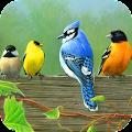 Bird Wallpapers APK for Ubuntu