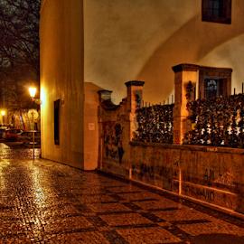 by Irena Brozova - City,  Street & Park  Historic Districts