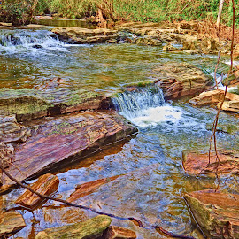 Spring by Justin Murphy - Nature Up Close Water ( water, creek, rock, rocks, woods )