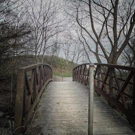 Lakeshore Walking Trail Bridge by Nick Goetz - Buildings & Architecture Bridges & Suspended Structures