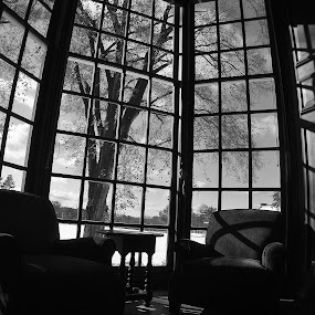 The Gardner Room  by MarySue Price - Artistic Objects Other Objects ( groton school, tree, chairs, black and white photo, library, gardner room )