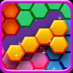 Hexa Puzzle Block Pro Icon
