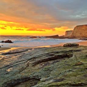 Snakeskin by Derek Gibbins - Instagram & Mobile iPhone ( cliffs, sunset, greenrocks, ocean, beach )