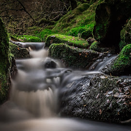by Terje Jorgensen - Nature Up Close Water
