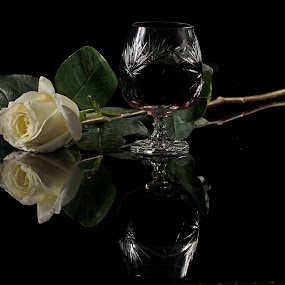 Cognac and White Rose by Cristobal Garciaferro Rubio - Food & Drink Alcohol & Drinks ( cup, rose, reflection, white rose, cognac, leaf, leaves )