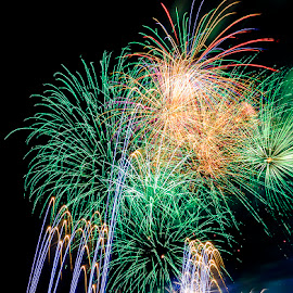 Fireworks Green by Jeff McVoy - Abstract Fire & Fireworks ( lights, blast, firework, green, explosion, fireworks, pop, sparkle, celebration, rainbow, celebrate, fire )