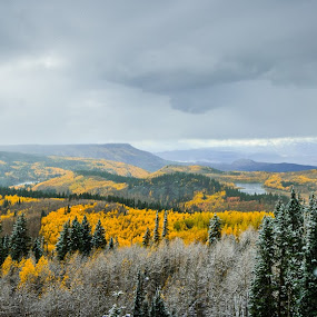 Fall in Colorado by Geoff Ridenour - Landscapes Mountains & Hills ( geoff ridenour, mountains, color, fall, www.geoffridenour.com, 2012, colorado, © 2012 geoff ridenour, travel )