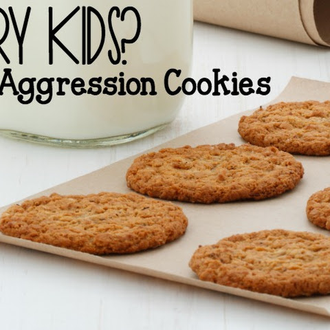Aggression Cookies An Allergy Friendly Oatmeal Cookie