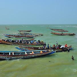 Gambia River by Tomasz Budziak - Transportation Boats ( transportation, africa )