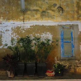 Le mur..... by Michel Desrosiers - Buildings & Architecture Other Exteriors