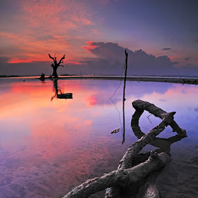by Echi Amenk Fariza - Landscapes Waterscapes