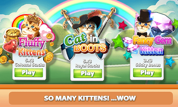 Casino Kitty Free Slot Machine APK screenshot thumbnail 3