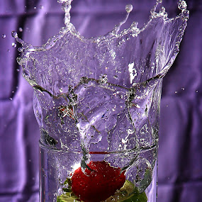 by Todd Klingler - Abstract Water Drops & Splashes (  )