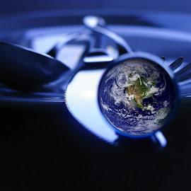 Globe by Amy Parson - Novices Only Objects & Still Life