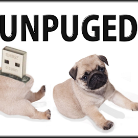 Unpuged by John Cuthbert - Animals - Dogs Puppies ( computer, birth, pup, usb, beauty, cute, spring, pug, love, beast, guh, girl, nature, rare, woman, baby, passion, man, animal, lol, creature, hold, hobby, funny, fun, soft, new, sweet, fluffy, pet, puppy, dog, boy )