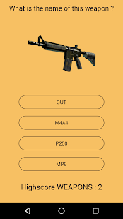 Survival Quiz for CS:GO - screenshot