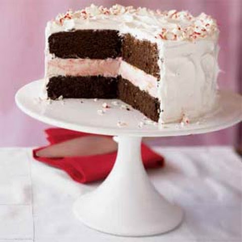 Christmas Ice Cream Cake Recipes | Yummly