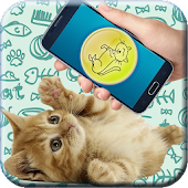 Download Cat translator (prank) APK for Android Kitkat