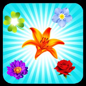 Cover art Blossom Crush