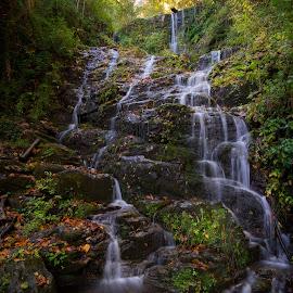 Waterfalls of Zagora by Grigoris Koulouriotis - Nature Up Close Water ( water, zagora, nature, pilio, outdoor, greece, waterfall, forest, landscape, woods, rocks )