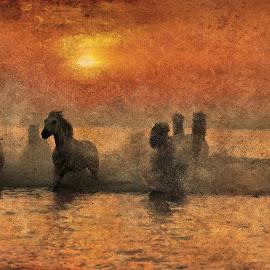 by Marijan Vučić Lovran - Painting All Painting