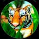 Animal Hunting Sniper Shooter