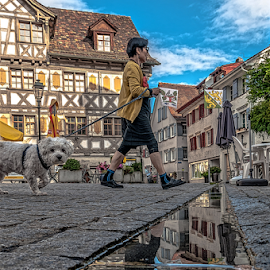 Walking!!! by Jesus Giraldo - City,  Street & Park  Street Scenes ( concept, walking, reflection, desing, colors, art, street, beauty, architecture, swiss, facades, style, hause, woman, buildings, dog, homes,  )