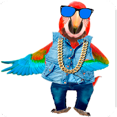 Dancing Talking Parrot APK for Ubuntu