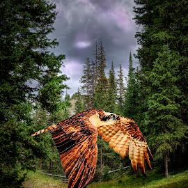 Surprise in the woods. by William Underwood  - Digital Art Animals