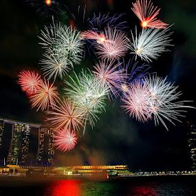 Sparkling Marina by Alit  Apriyana - City,  Street & Park  Vistas ( fireworks, singapore )