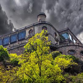 Castillo de Chapultepec  by Gliserio Castañeda G - Buildings & Architecture Public & Historical