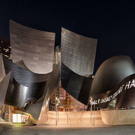 Walt Disney Concert Hall by Vinod Kalathil - Buildings & Architecture Public & Historical ( building, california, los angeles, night, architecture )