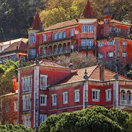 Houses On The Hillside Sintra Portugal by Graham Mulrooney - Buildings & Architecture Public & Historical ( masonry, structure, building, brick, brickwork, house, architecture, mansions, hillside, red, village, facade, horizontal, sintra, buildings, architectural, portugal )