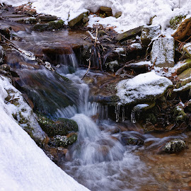 Cascades on stream by Michaela Firešová - Nature Up Close Water ( water, winter, cascades, long exposure )